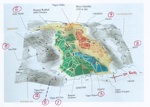 Map-Ginestra-VIPa-E